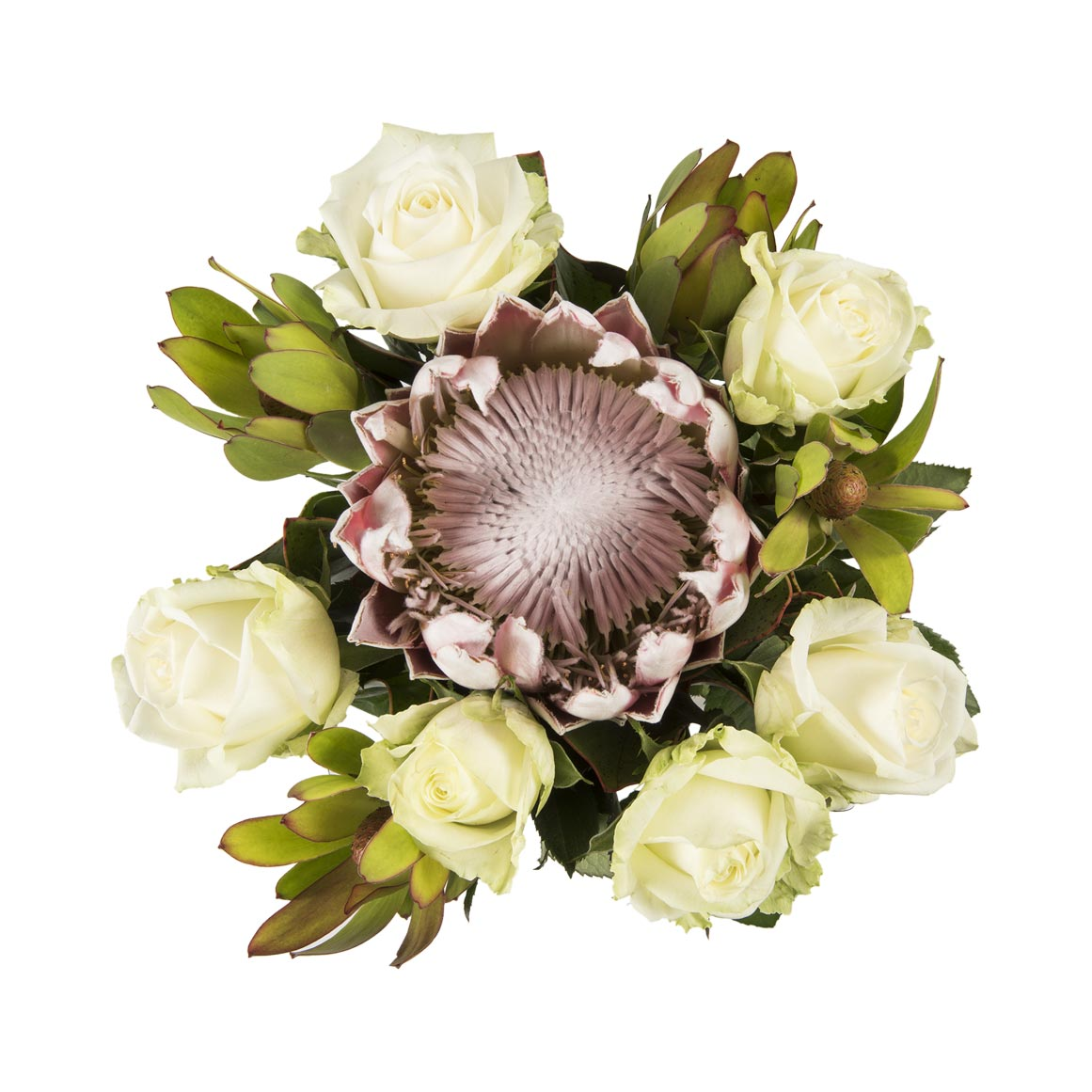 Rose Protea Bouquet Woolworths